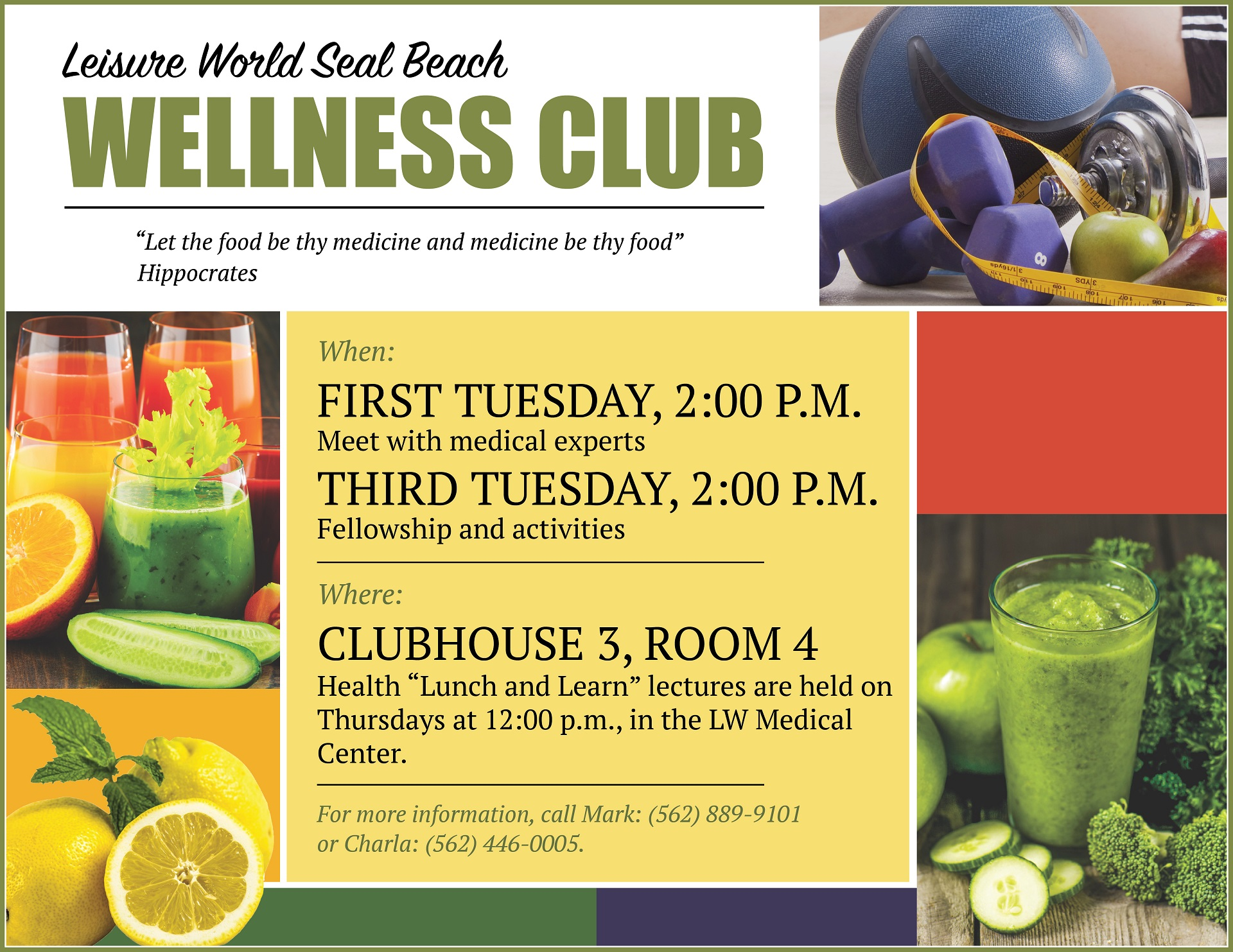 Wellness club flyer